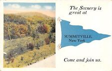 """""""The Scenery is Great at"""" Summitville New York~Come Join Us~1916 Pennant PC"""