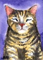 CAT ORIGINAL ACEO ATC Water Colour Painting Art Card Mother Kitten Gift HBD OOAK