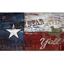 Texas Flag Recycled Rubber Door Mat 18 in. x 30 in. Home Entryway Floor Rug