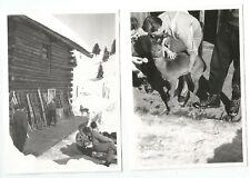 Vintage, 2x altes Foto,Konvolut old photo, Snapshot, Skiurlaub Tirol, Bambi, Reh