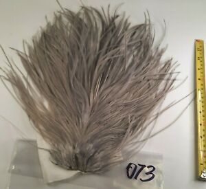 Medium Lt Blue Dun Rooster Saddle Hackle Long Thin Dry Fly Tying Feathers #073
