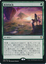 ***4x JAPANESE Collective Voyage*** Commander 2016 Mint MTG Magic Cards