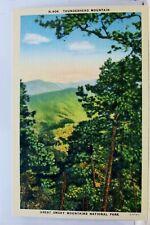 Great Smoky Mountains National Park Thunderhead Mountain Postcard Old Vintage PC