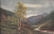 CE27.Vintage Greetings Panel Postcard. Countryside scene.Streams,woodland