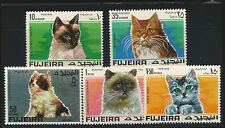 CATS Multi Color Set of 5 Beautifull Mint NH Fujeira Postage Stamps