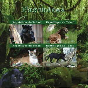 Chad Wild Animals Stamps 2021 MNH Panthers Leopards Black Panther 4v IMPF M/S