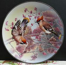 """Rosenthal Wandteller """" Seidenschwänze """" Juwelen der Vogelwelt !!!"""