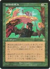 Saproling Symbiosis - 209/350 (Japanese) Invasion Near Mint Non-English K5K