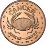 1 oz Copper Round - Cancer