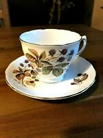 Vintage Royal Vale Bone China Tea Cup and Saucer Berries B8 Made in England