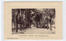 LA RUE CHASSELOUP-LAUBAT, SAIGON: French Indo-China postcard (C24497)