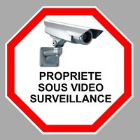 VIDEO SURVEILLANCE PROPRIETE ALARME CAMERA SECURITE 9cm STICKER VA095