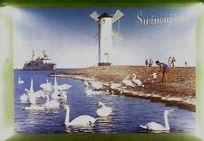CPA Poland Świnoujście Ship Boat Windmill Moulin Windmühle Wiatrak Swan w115