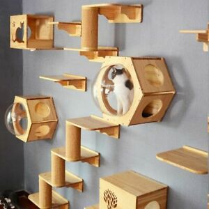 Wallmounted Cat climbing Frame Tree Solid Wood Hexagon Space Capsule Springboard