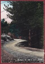 GENOVA ROVEGNO 05 PINETA Cartolina FOTOGRAFICA viaggiata 1958