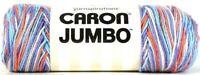 1 Yarnspirations 12 Oz Caron Jumbo 16004 Floral Ombre 4 Med 100% Acrylic Yarn