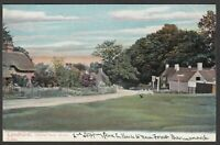 Postcard Lyndhurst New Forest Hampshire view of Swan Green by Peacock Series