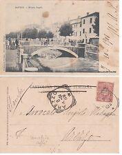# ROVIGO: RIVIERA ANGELI    1901