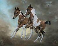 PINTO FOAL COLT FILLY saddlebred paint arabian horse art print  SHIVAK art PLAY