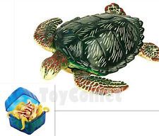 Green Turtle Sea Creatures Animal Part I 4D 3D Puzzle Model Kit Toy