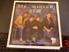 MR MISTER IS IT LOVE 3 TRACK 12 INCH SINGLE MIXES