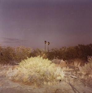 Richard MISRACH: Northern California, 1979 / VINTAGE Cibachrome / SIGNED!