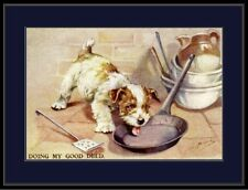 English Picture Print Sealyham Terrier Puppy Dog Art