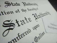 Fake College Degree, Doctorate PhD  | 11X14 | Raised ink Print + Engraved folder