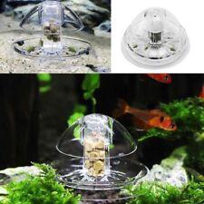 Pet Supplies Leech Catcher Snail Trap Pest Catch Box Snail Catcher Fish Tank