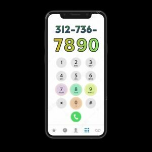 (312) CHICAGO AREA CODE PHONE NUMBER - PORT/TRANSFER TO ANY CARRIER