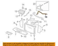 GM OEM Radiator-Vent Hose 15020224