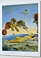 Salvador Dali-Dream Caused By the Flight  of a Bee Around a Pomegranate 14x11