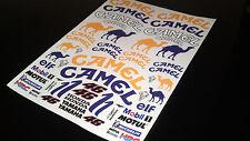 Rc car moto f1  decals stickers 1/10 1/8 Camel race replica glossy vinyl a4