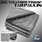 30x40ft HD Canopy Poly Tarp 14mil Tarpaulin Reinforced Tent Boat Cover Silver