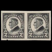 Scott 611 Harding Imperforate Pair 1923 US Mint NG 2 Cent Black Scans