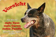 Australian CATTLE DOG - A4 Metall Warnschild Hundeschild Alu SCHILD - ACD 02 T1