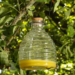 Wespenfänger HONIGTOPF Wespenfalle geriffeltes Glas D: 13cm H:17cm Insektenfalle