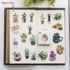 Phone Decor Stickers Diary Label Succulent Plants  Sticker Paper Sticker