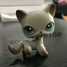 ORIGINAL Littlest Pet Shop lps Toy Figure Short Hair Cat # 391 No magnet