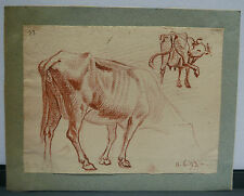 Dessin Original Sanguine XVIIIe vers 1790 Animalier Etude de Vaches SDV15
