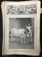Lot of 25 RURAL NEW YORKER MAGAZINE - 1920 - Extremely Rare and in Great Shape