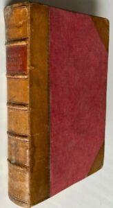 1884 BELINDA by Rhoda Broughton, FREE EXPRESS W/WIDE