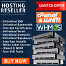 Reseller Hosting Unlimited - CloudLinux - LiteSpeed - Railgun - FREE SSL - WHM ✅