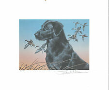 Oregon #6 1989 State Duck Stamp Print Black Lab / Pintail by Phillip Crowe
