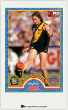 1996 Tip Top Hyfibe AFL Heroes Card #5 Wayne Campbell (Richmond)