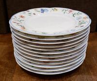 "* Set of 12 * Villeroy & Boch MARIPOSA -- 6-1/4"" Bread Dessert Plates Plate Set"