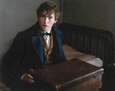EDDIE REDMAYNE.. Fantastic Beasts' Newt Scamander - SIGNED