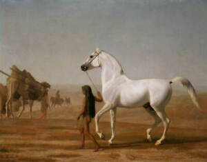 Jacques Laurent Agasse The Wellesley Grey Arabian Led Giclee Paper Print Poster