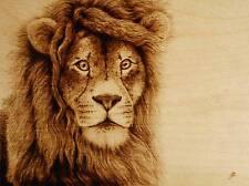 """ORIGINAL DRAWING-PYROGRAPHY/WOODBURNING-""""LION"""" ANIMAL, BIG CAT, AFRICAN KING"""