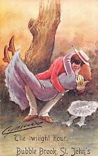 POSTCARD  COMIC  CYNICUS  BUBBLE  BROOK  ST  JOHN'S  The  twilight hour